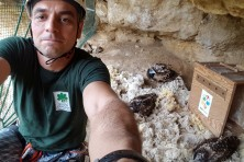 Installing nest camera for permanent observation (photo: I. Klisurov / Green Balkans)