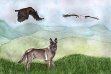 Anti-poison dog supports vultures (Daniela Silva,WWF/EVS)
